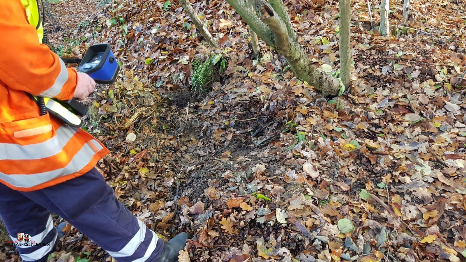 Feuer Wald klein (FW1)