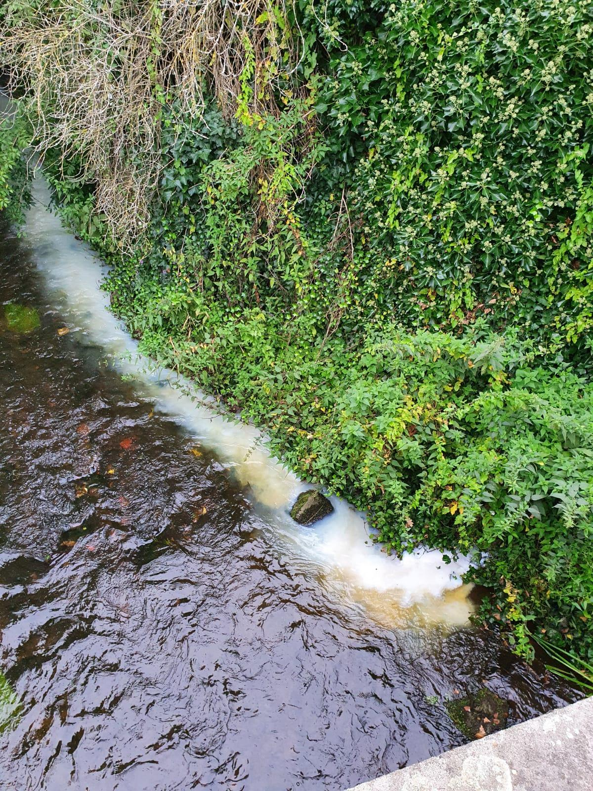 Technische Hilfeleistung Wasser - Verunreinigung (THWV)